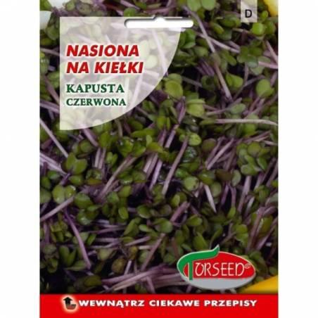 Torseed Kapusta czerwona 10g nasiona na kiełki