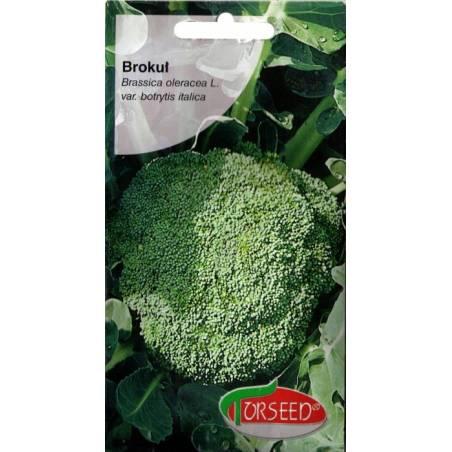 Torseed 2g Brokuł Calsbrese Natalino Nasiona