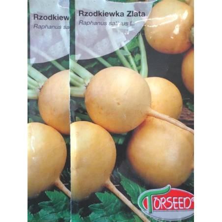 Torseed 5g Rzodkiewka Zlata Żółta Okrągła Nasiona