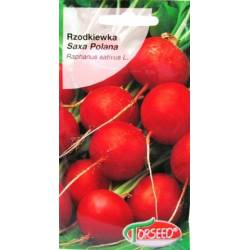 Torseed 10g Rzodkiewka Saxa Polana Nasiona