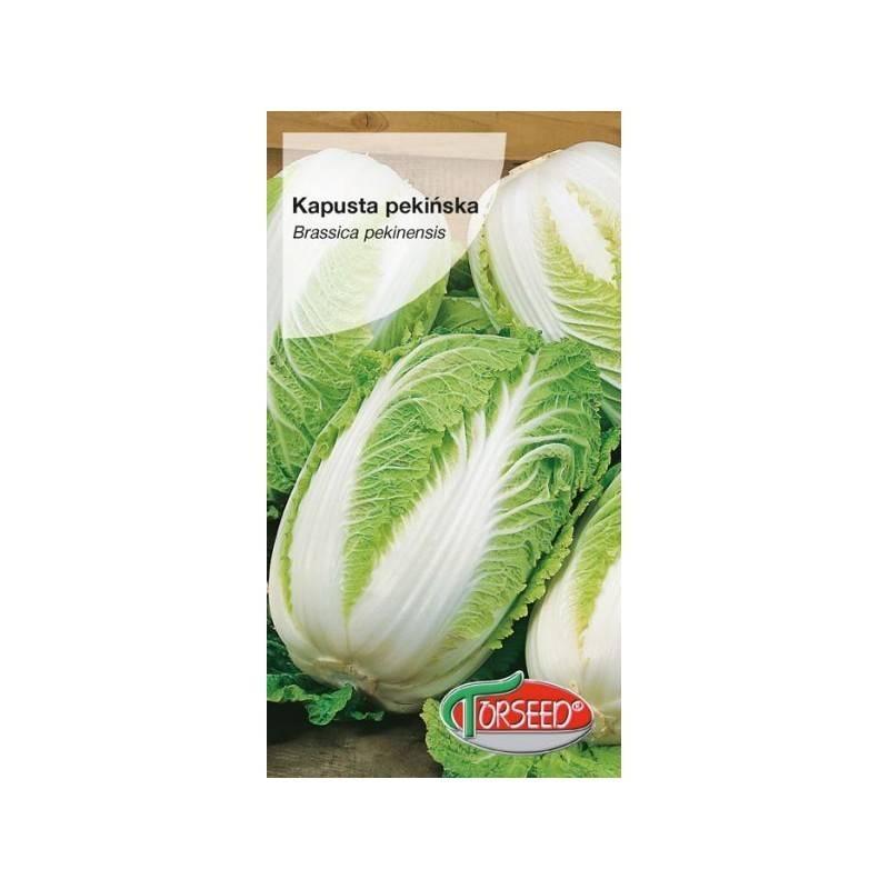Torseed 0,5g Kapusta Pekińska Forco F1 Nasiona