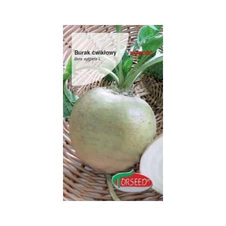 Torseed 5g Burak Ćwikłowy Śnieżna Kula Biały Nasiona