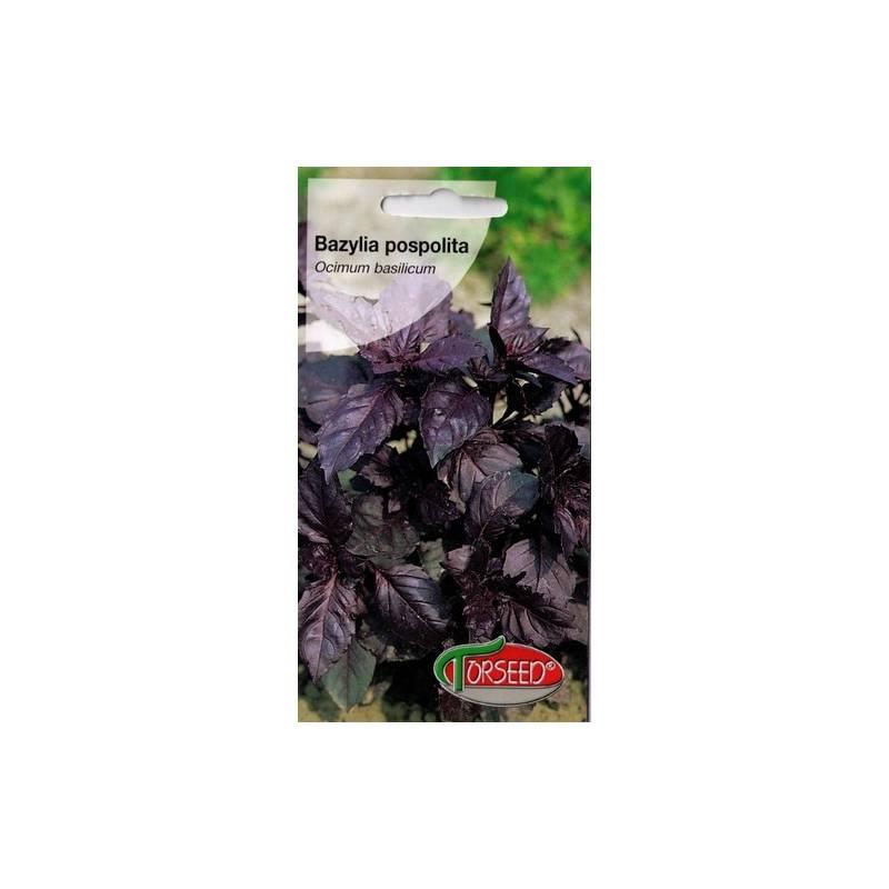 Torseed 0,2g Bazylia Pospolita Dark Opal Czerwona Zioła Nasiona