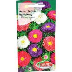 Torseed 1g Aster Chiński Bukietowy Mieszanka Nasiona Kwiatów