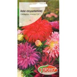 TORSEED 1G ASTER CHRYZANTEMOWY