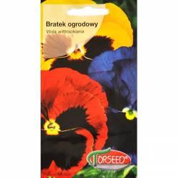 Torseed 0,5g Bratek ogrodowy mieszanka kolorów mix nasiona kwiatów
