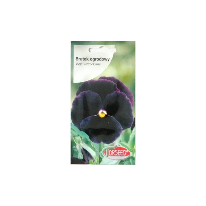 Torseed 0,5g Bratek ogrodowy ciemno fioletowo niebieski nasiona kwiatów