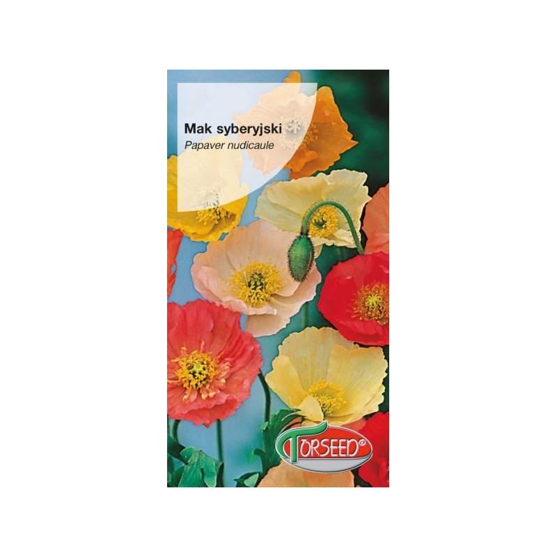 Torseed 0,5g Mak syberyjski mieszanka nasiona kwiatów