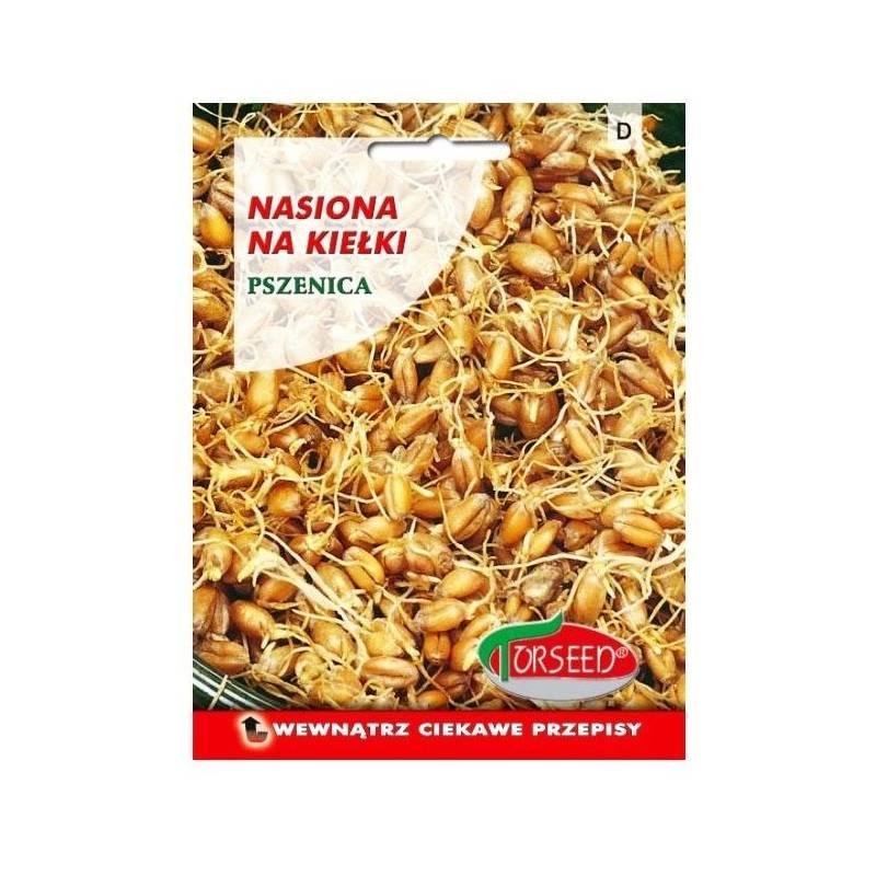 Torseed Pszenica 50g nasiona na kiełki