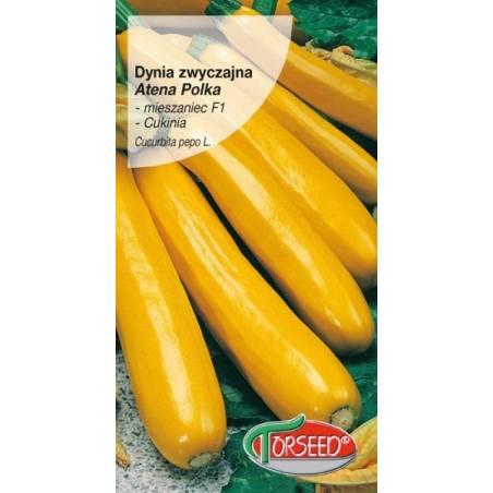 Torseed Dynia zwyczajna cukinia Atena Polka F1 2g żółta Nasiona