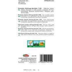 Torseed Pietruszka korzeniowa Halblange - Berlińska Tor 5g późna Nasiona