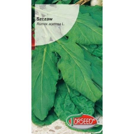 Torseed Szczaw Zwyczajny Belwilski 2g duże liście gruby mięsisty