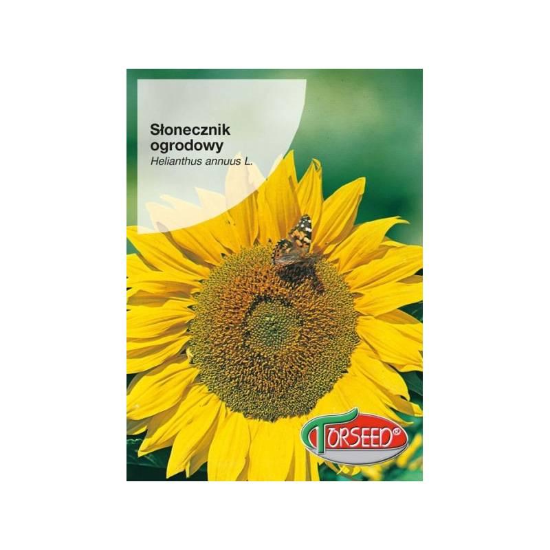 TORSEED Słonecznik ogrodowy 10g