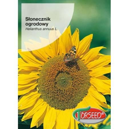 TORSEED Słonecznik ogrodowy 10g jadalny nasiona na pestki