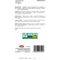 TORSEED Szczypiorek Bolek 0,5g Nasiona