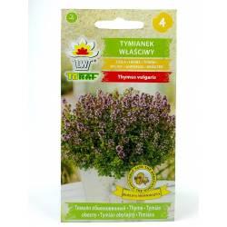 Toraf 0,5g Tymianek Właściwy Nasiona ziół Przyprawy Aromatyczne zioło Działanie napotne moczopędne