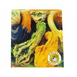 Toraf 2g Dynia ozdobna Little Indian mix Nasiona pnąca płożąca dekoracyjna