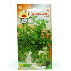 Toraf 1g Biedrzeniec Anyż Nasiona zioła łagodzi kaszel wspomaga układ trawienny
