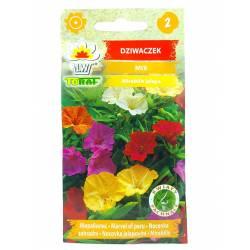 Toraf 2g Dziwaczek Wilobarwny Mix Nasiona kwiatów Mieszanka kolorów Świecący nocą