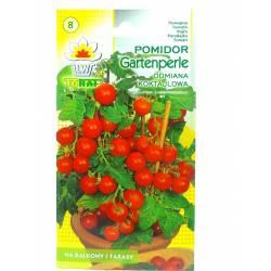 Toraf 0,5g Pomidor Gartenperle Czerwony Koktajlowy Nasiona warzyw odmiana gruntowa słodki soczysty