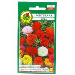 PNOS 0,5g Portulaka Pełna Mieszana Nasiona kwiatów Roślina jednoroczna Mieszanka kolorów Ogródki skalne Kwietniki