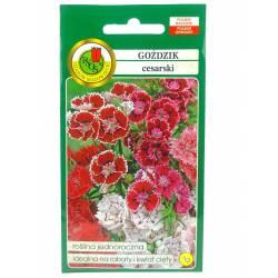 PNOS 1g Goździk Cesarski Nasiona kwiatów Roślina jednoroczna Mieszanka kolorów Kwiat cięty Rabaty
