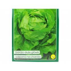 PNOS 1g Sałata Masłowa Ewelina Nasiona warzyw Odmiana zielona Odporna na mączniaka Plenna Bardzo smaczna