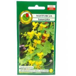 PNOS 2g Nasturcja Kanaryjska Żółta Nasiona kwiatów Roślina jednoroczna Pnącze Obsadzanie altan ogrodzeń