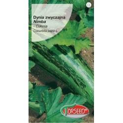 Torseed 2g Dynia Zwyczajna Cukinia Nimba Zielona Nasiona