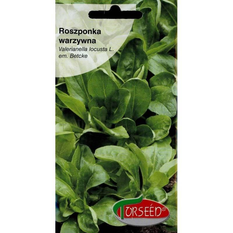 Torseed 2g Roszponka Warzywna Zdrowsza Niż Sałata Nasiona