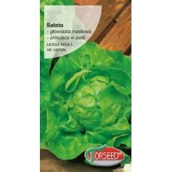 Torseed 0,5g Sałata Głowiasta Masłowa Zina Zimująca Nasiona