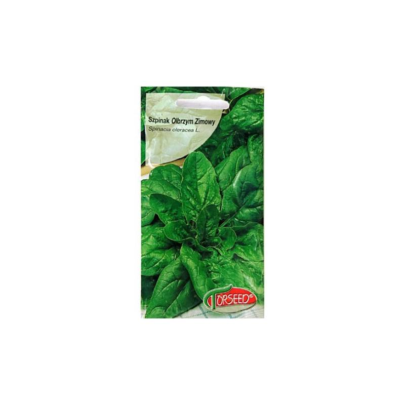 Torseed 10g Szpinak Olbrzym Zimowy Zimujący Nasiona
