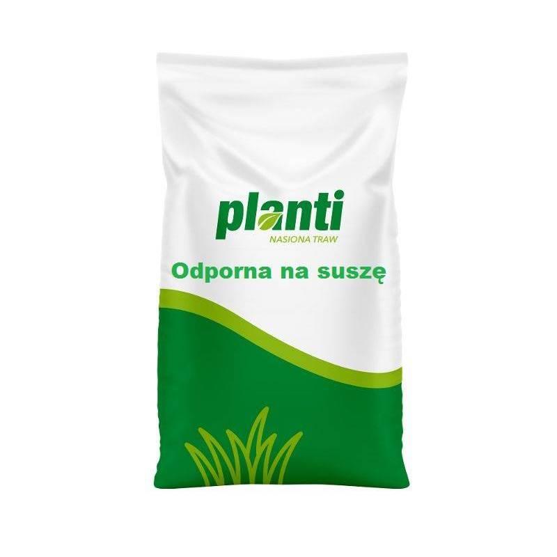 CNW 5 kg Trawa Sahara Planti Na tereny suche Rzadsze podlewanie Odporna