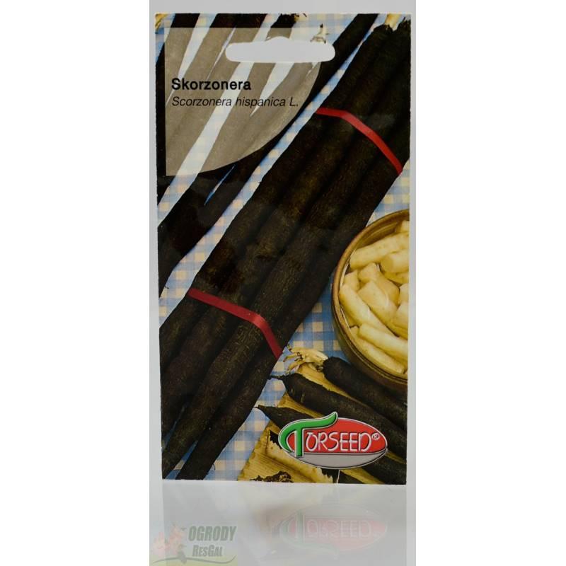 Torseed 2g Skorzonera Szparagi Zimowe Nasiona