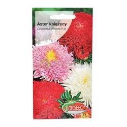 Torseed 1g Aster Książęcy Mieszanka Nasiona Kwiatów