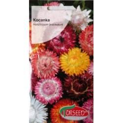 Torseed 2g Kocanka mieszanka kolorów nasiona kwiatów na suche bukiety