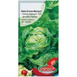 Torseed 2g Sałata Królowa Majowych Masłowa Nasiona