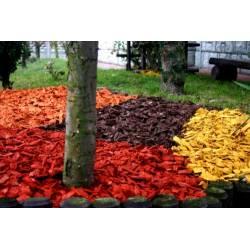Kora Kolorowa Zrębki Dekoracejne Ozdobe 50l Mulcz Ekodekorant Wokas Holas Athena