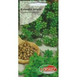 Torseed 2g Kolendra Siewna Zioła Nasiona