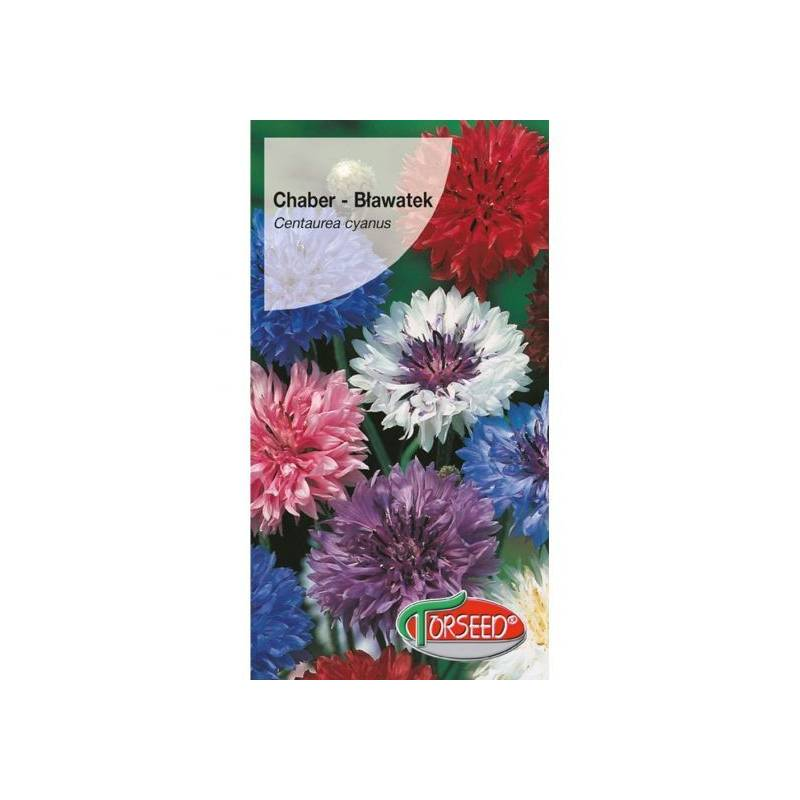 Torseed 2g Chaber bławatek Polka dot mieszanka kolorów nasiona kwiatów
