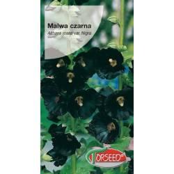 Torseed 1g Malwa czarna wieloletnia byliny nasiona kwiatów
