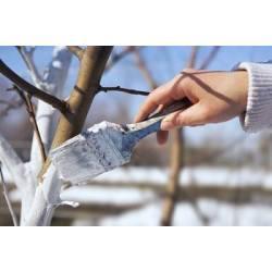 Biopon 1kg Wapno ogrodnicze do bielenia drzew i odkwaszania gleby