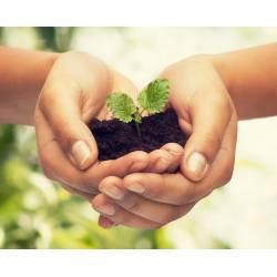 Ekodarpol 1l+20% gratis Biohumus Extra Uniwersalny nawóz z hodowli dżdżownic