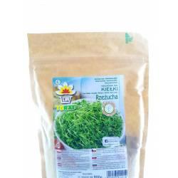Toraf 500g Rzeżucha nasiona na kiełki DUŻA PACZKA wyrazisty smak